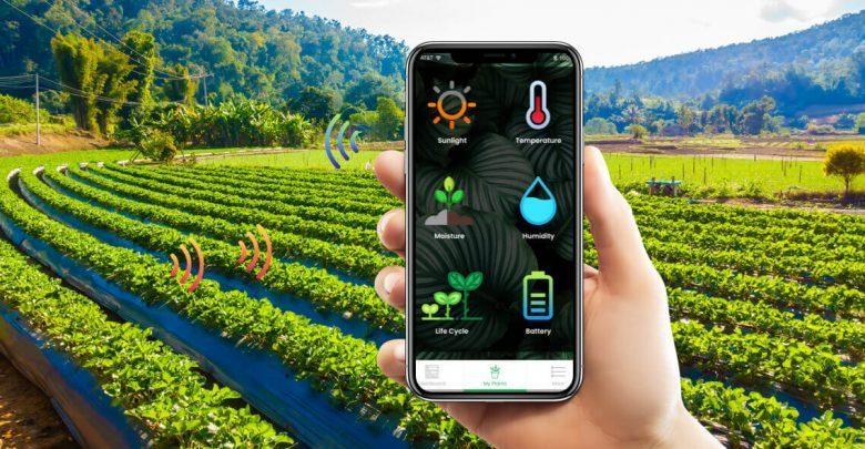 [penerapan IoT di pertanian]. Sensor terkoneksi dengan smartphone