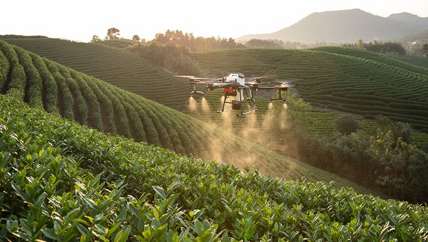 [penerapan IoT di pertanian] UAV Pembasmi hama