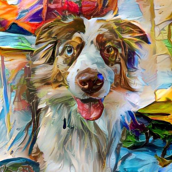 Aussie AugiDog Pet Canvas