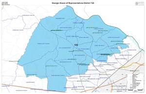 GA House District 122 map