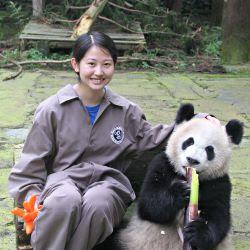 stannes pandas