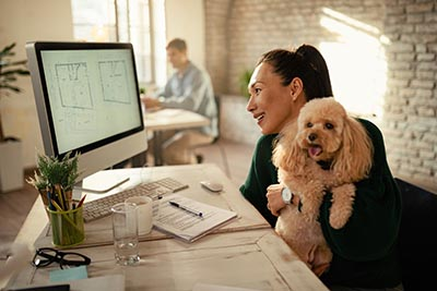 dog pet friendly office business