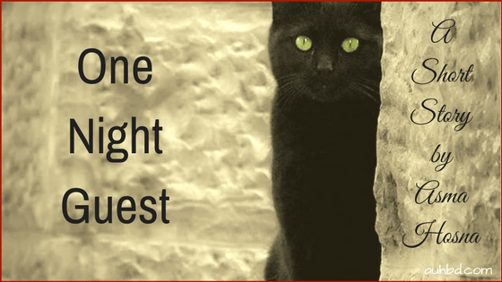 One Night Guest — A Short Story