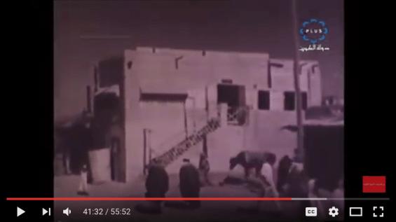 Kuwait Documentary 2016-06-16 at 11.16.53 AM