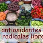 ¿Qué son antioxidantes y los radicales libres?