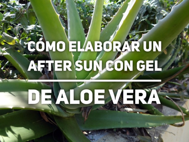 Como elaborar un after sun con gel de aloe vera