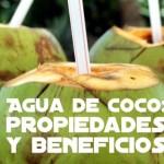 Agua de coco: propiedades y beneficios