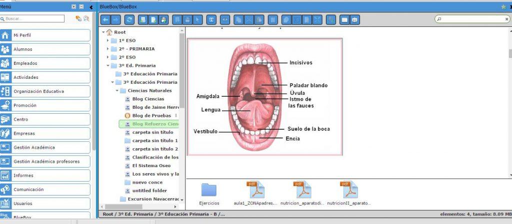 Creación de contenidos a través de la plataforma de gestión integral de centros educativos AULA1
