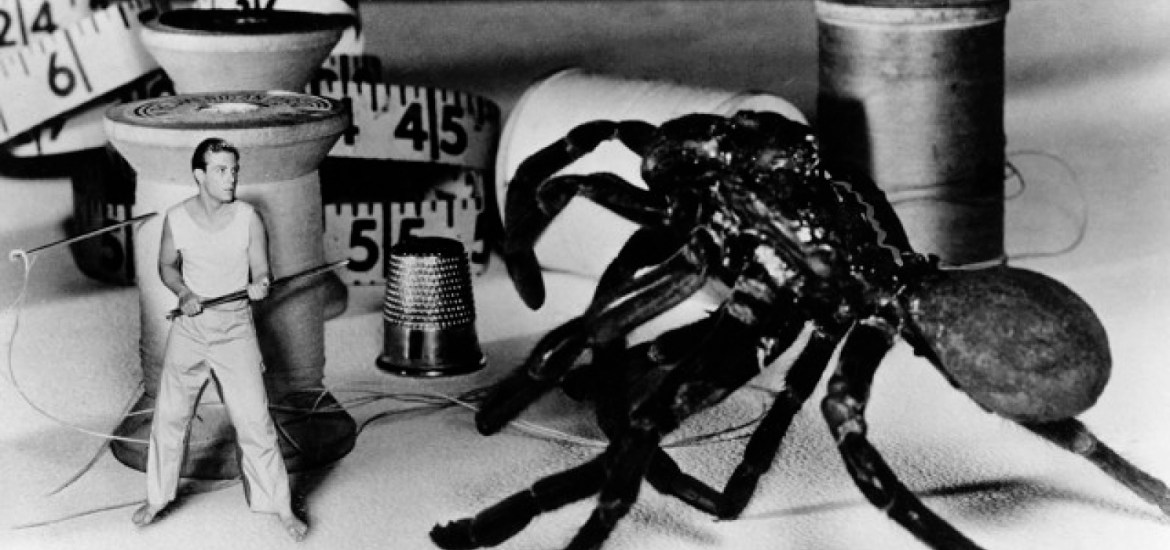 Incredible Shrinking Man, The (1957) | Pers: Grant Williams | Dir: Jack Arnold | Ref: INC007AX | Photo Credit: [ Universal / The Kobal Collection ] | Editorial use only related to cinema, television and personalities. Not for cover use, advertising or fictional works without specific prior agreement