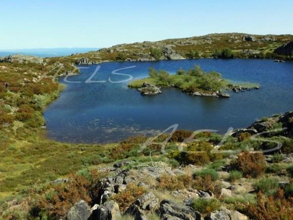 Laguna del Cuadro con las orillas totalmente naturalizadas y ausencia de banda árida
