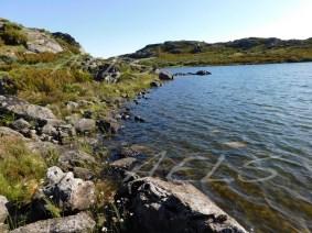 Orillas naturales de la laguna de la Roya