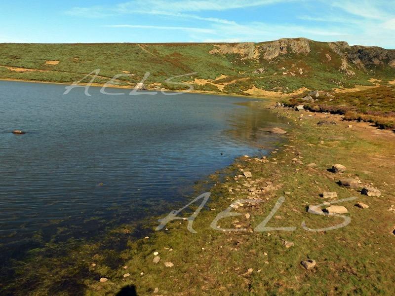 Orilla este de la laguna con importante banda árida