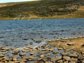 Orillas de la laguna con una cierta banda árida