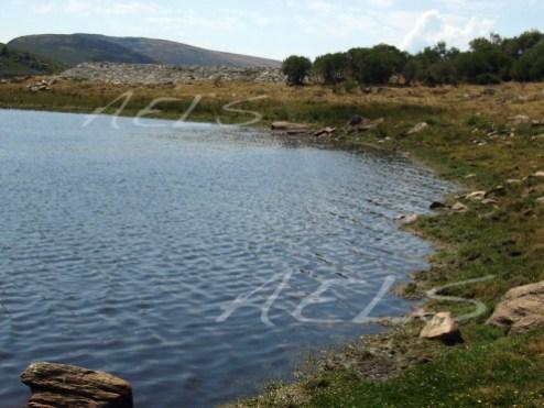 Zona de cabecera del embales de Vega de Conde. 18 de agosto de 2008