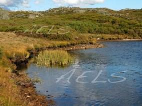 Orillas de la turbera La Clara con un fuerte estiaje en septiembre.