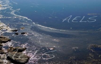 Detalle del microlayer atrapado en la ensenada noroeste de la laguna del Cuadro. 5 de octubre de 2017.
