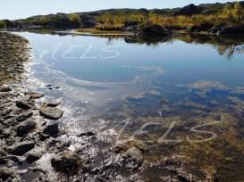 Orillas enfangadas por el bajo nivel del agua y el pisoteo del ganado. Se aprecia una capa microlayer de depósito de partículas sobre la superficie del agua proveniente del polvo y las cenizas.