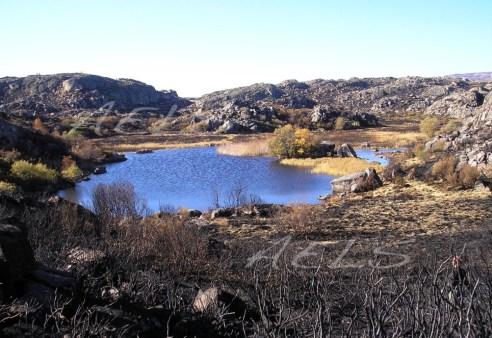 26 de octubre de 2005. Panorámica de la turbera de la Roya tras el incendio y el llenado parcial de la cubeta por las lluvias.