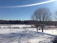 My front yard (Bouctouche River in the distance)