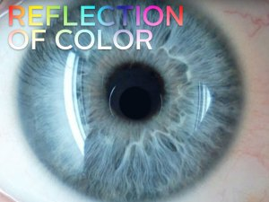 Reflection of Color