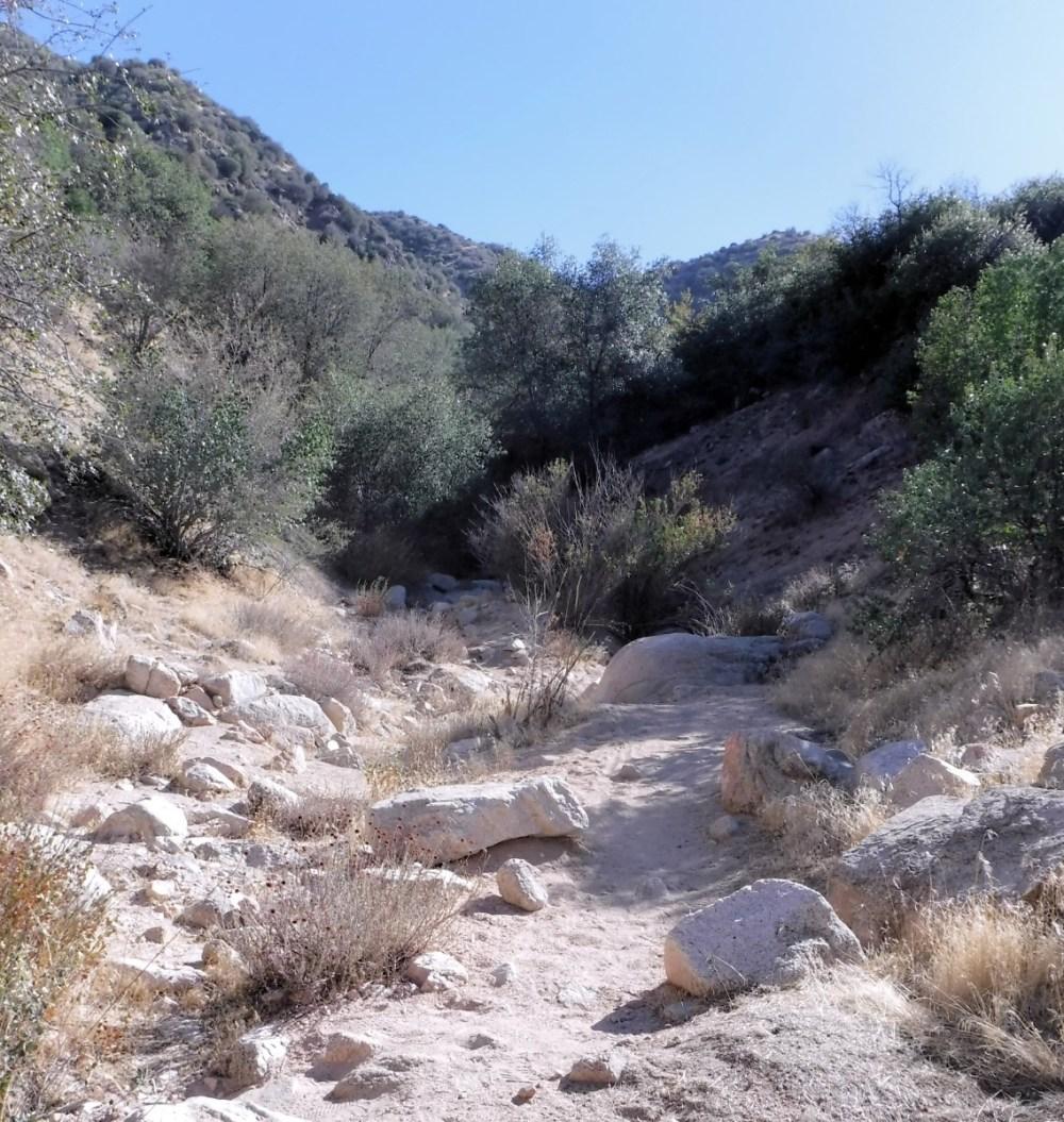 Deep Creek Hot Springs 1333