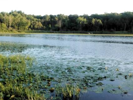 nester lake