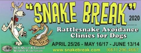 Snake Break