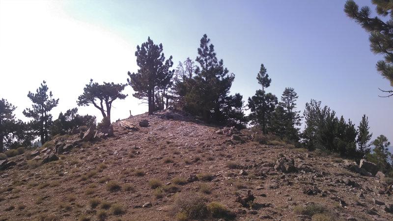 West peak of Sawmill Mountain