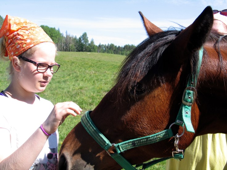 IMG_3276, Jusala, Jusalan tila, hevoset, hevonen, maatilamatkailu