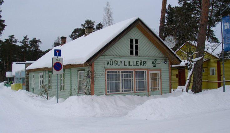 Viro, Vōsu, merenranta, talvella kiinni, kesäkaupunki