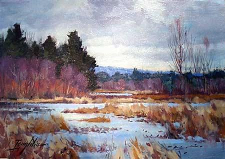 rutland marsh by john loughlin