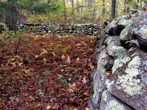one of over a dozen stone walls