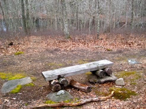 bench at francis carter