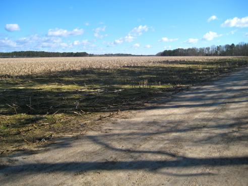 2013 N-S Trail Trek, Leg 2—North of Meadowbrook Pond, Richmond