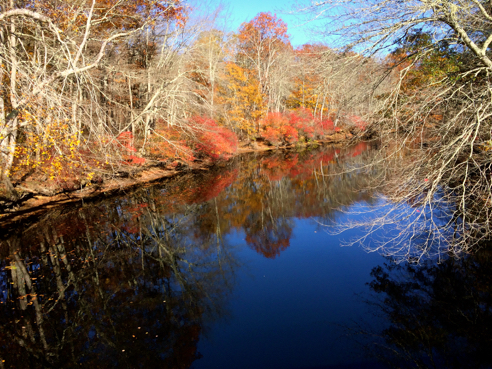 pawcatuck river from the polly coon bridge