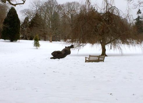 wilcox park in the snow