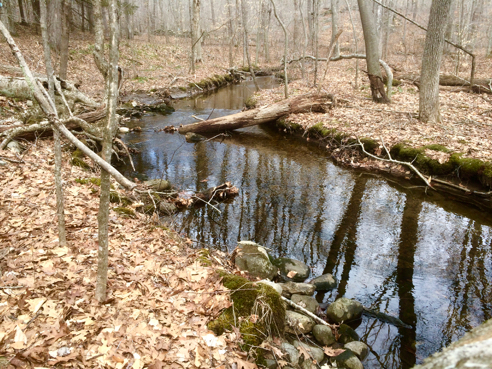 Yawbux Brook
