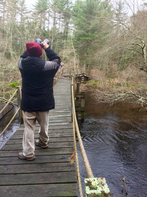 Birder on Bridge