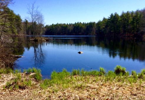 Richardson Pond