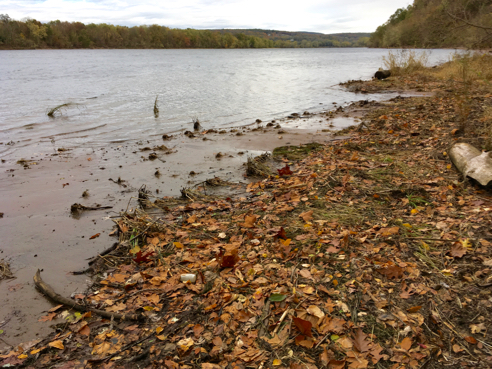 Connecticut River Shoreline