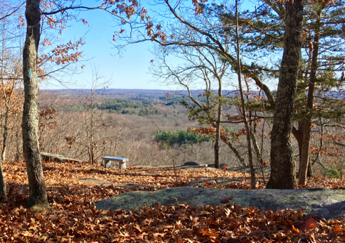 Fifty-Foot Cliff Overlook and Memorial Bench
