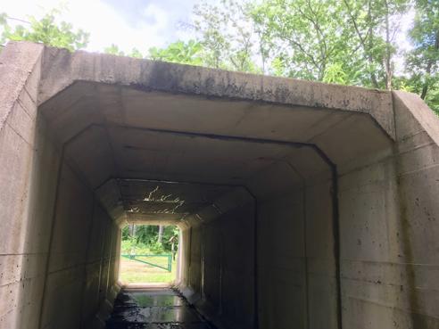 Tunnel Under the Railroad Tracks