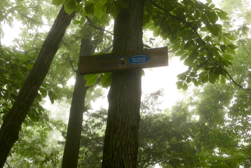 Junction Signage