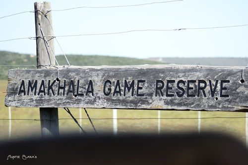 Amahkala Game Reserve