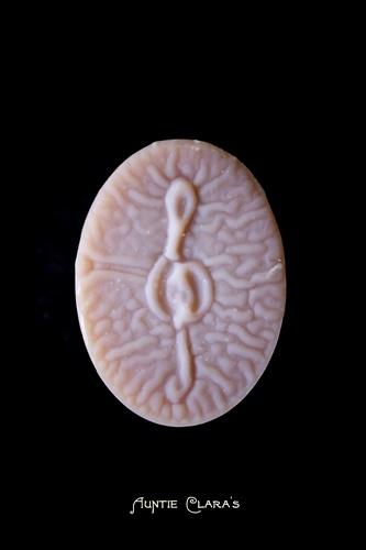 Musical 'Alien Brain' soap by Auntie Clara's