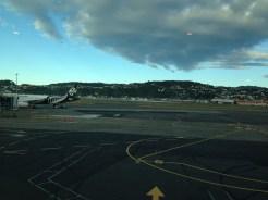 Lovely day in Wellington!