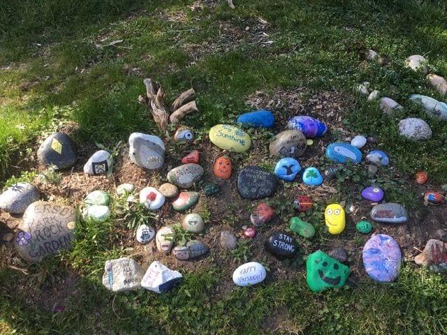 Painted rocks in Endersby Park