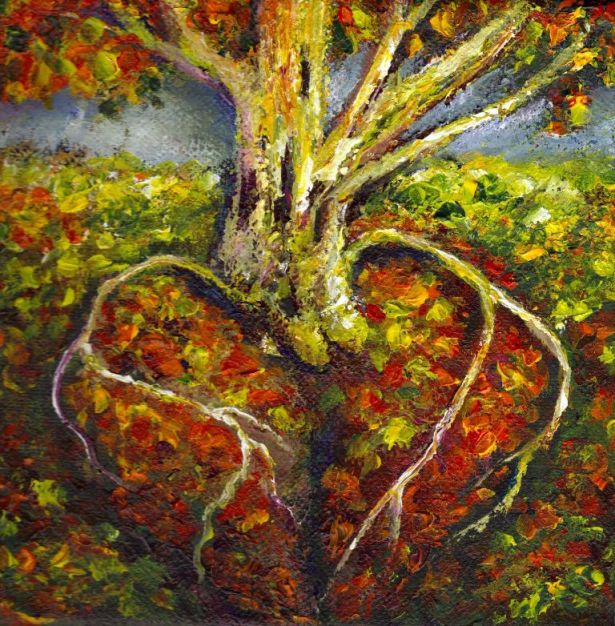 cardiac roots