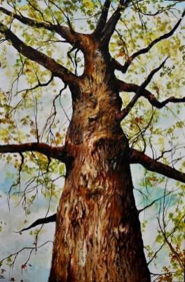 Portrait of My Old Tree