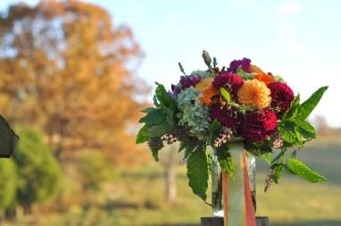 pretty fall colored dahias